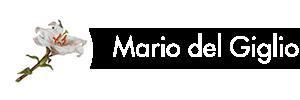 Mario Del Giglio